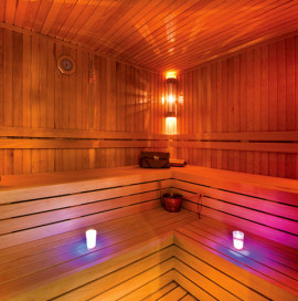 The Eylsium Termal Hotel & Spa – Sauna